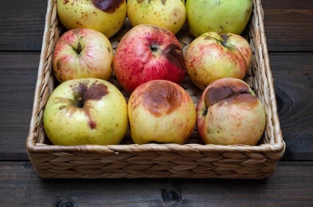 Hässliche äpfel am weidenkorb auf der hölzernen braunen tabelle. nahansicht.