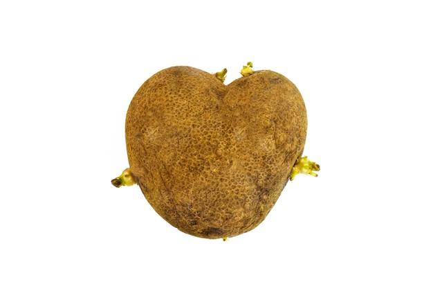 Hässliche kartoffel in der herzform auf einem weißen hintergrund. ungewöhnliches konzept für gemüse- oder lebensmittelabfälle.