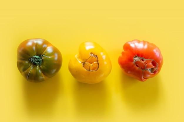 Hässliche organische bunte tomaten eingestellt auf gelb.