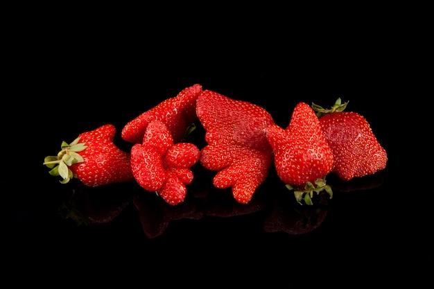 Hässliche organische selbstgezogene erdbeere auf schwarzem hintergrund mit kopienraum. trendy hässliches essen. seltsame lustige unvollkommene früchte, nahaufnahme. missgestaltetes produkt, lebensmittelabfallkonzept.