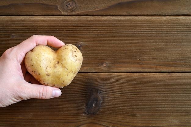 Hässliches essen. frauenhand, die hässliches gemüse eine herzförmige kartoffel auf einem hölzernen plankentisch hält. platz für text