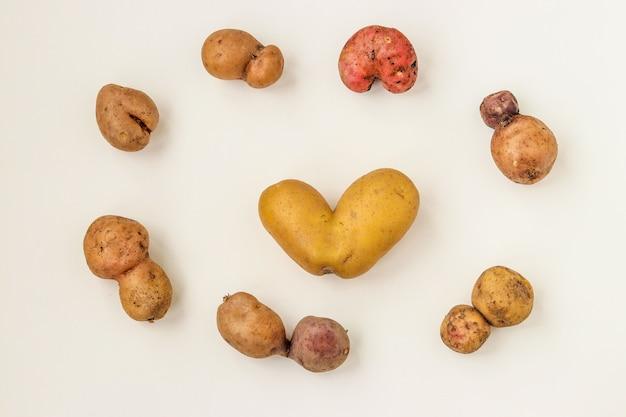 Hässliches organisches anormales gemüse - kartoffeln auf weißem hintergrund, konzept-bio-gemüse, ansicht von oben, horizontale ausrichtung