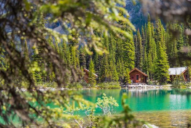 Häuschen am wanderweg see ohara am sonnigen tag im frühjahr, yoho, kanada