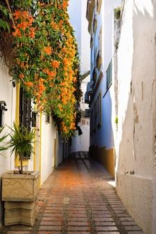 Häuser mit blumen in der alten stadt von marbella in spanien