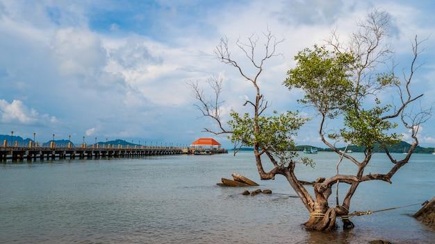 Hafen der insel lanta mit brücke und baum auf der insel lanta, krabi, thailand