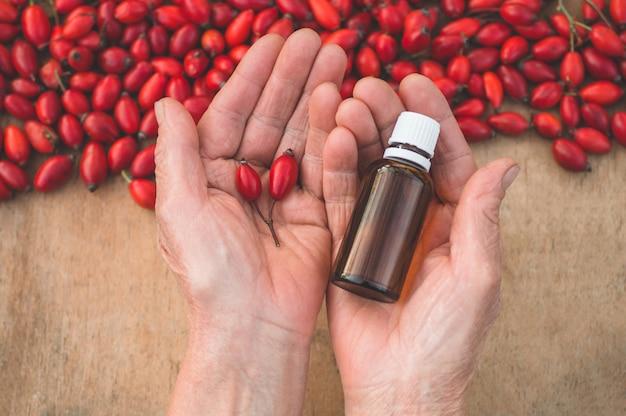 Hagebutten- und hagebuttensamenöl in den händen der großmutter. hagebutte oder hagebutte, allgemein bekannt als hagebutte (rosa canina). nahansicht.