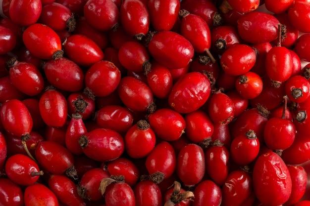 Hagebuttene ist reich an vitaminen und wird als füllungsmaterial verwendet