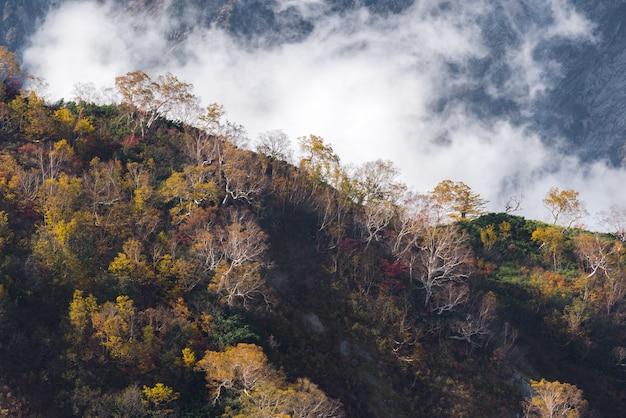Hakuba-tal autumn nagano japan