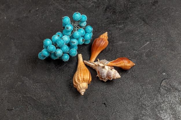 Halbe draufsicht auf muscheln und perlen, die auf der grauen wand der muschelfarbwand isoliert sind