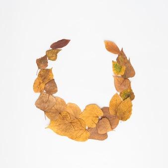 Halbkreis aus getrockneten Blättern