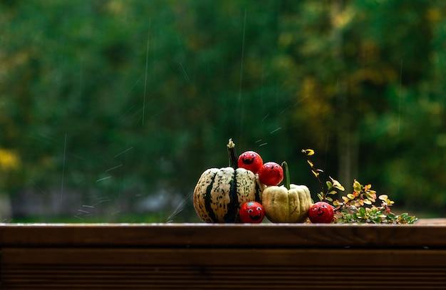 Halloween dekoration kürbisse und süßigkeiten bonbons auf einer heimischen holzterrasse im regen