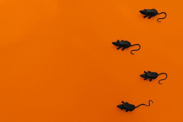 Halloween-dekoration mit vier ratten