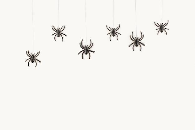 Halloween-hintergrund mit den spinnen auf weißem hintergrund.
