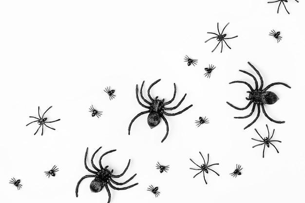 Halloween-hintergrund mit spinnen. flache lage, trendiges urlaubskonzept von oben.