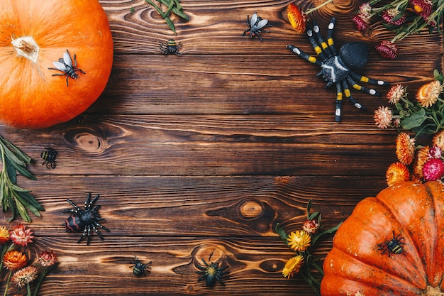 Halloween-konzept mit frischen kürbissen, spinnen und wanzen nahaufnahme auf dem tisch. süßes oder saures ansicht von oben