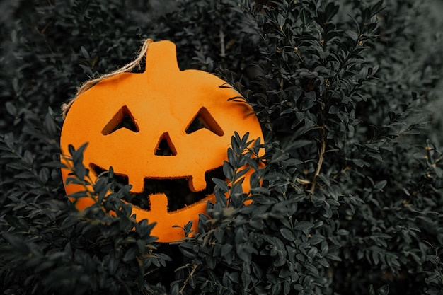 Halloween-kürbis auf dem dunkelgrünen blattmuster