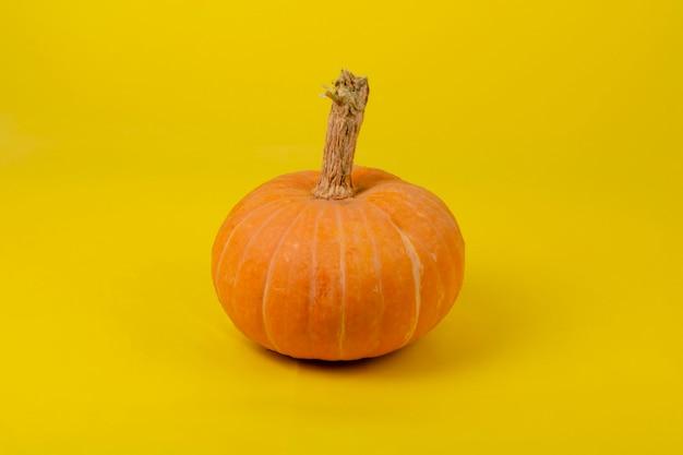 Halloween-kürbis auf einem gelb-orange hintergrund