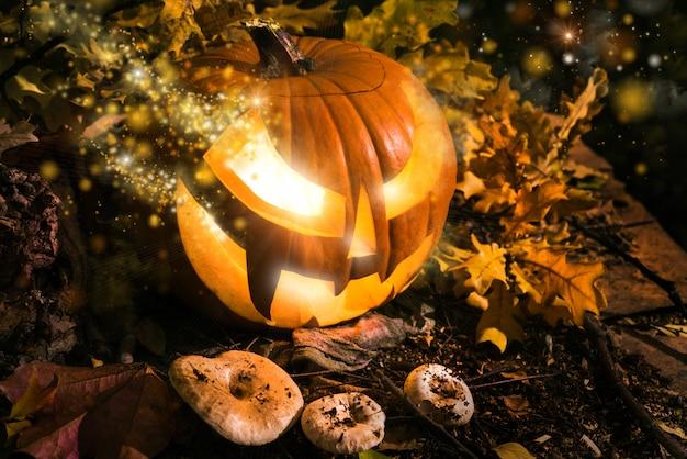 Halloween kürbis im freien