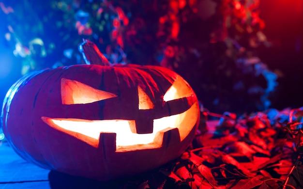 Halloween-kürbis in einem mystischen wald nachts.