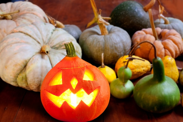 Halloween kürbis jack o laterne glüht