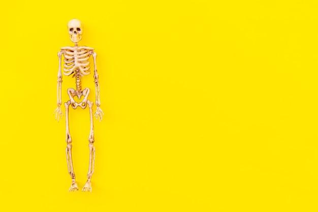 Halloween minimale dekorationskomposition mit gruseligem skelettmonster isoliert auf gelbem hintergrund...
