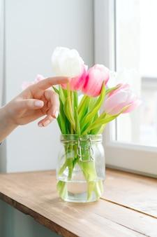 Hand berührende knospen von tulpen in einer vase auf der fensterbank