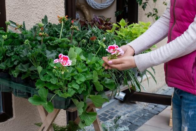 Hand blumenladen straßenmarkt verkäufer bieten rosa grün grün