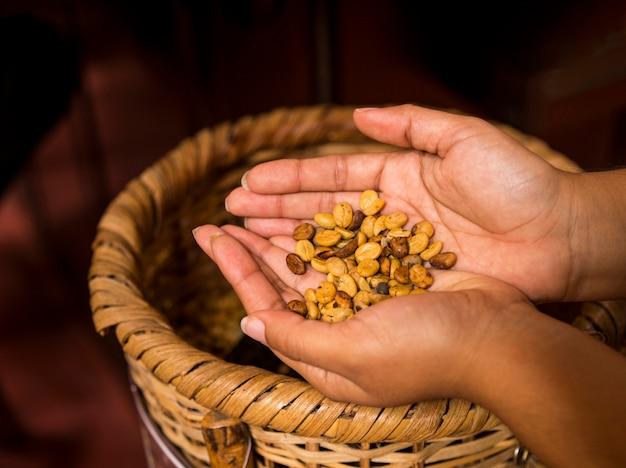 Hand der frau, die kaffeebohnen über weidenkorb hält