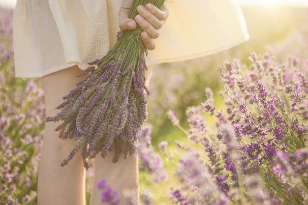Hand der frau, die reizenden blumenstrauß von lavendelblumen hält. sommerstimmung. sonnenuntergang schönes licht.