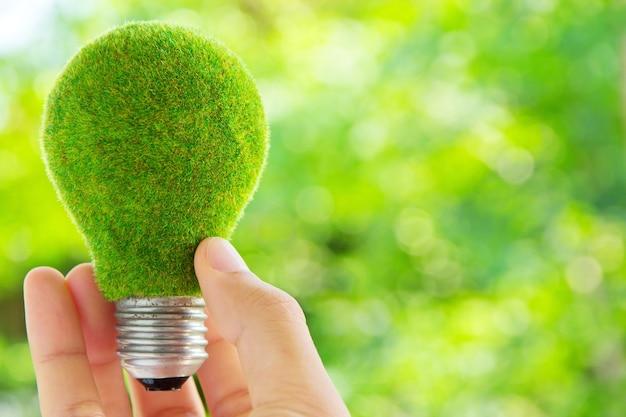 Hand, die eco glühlamperenergiekonzept hält