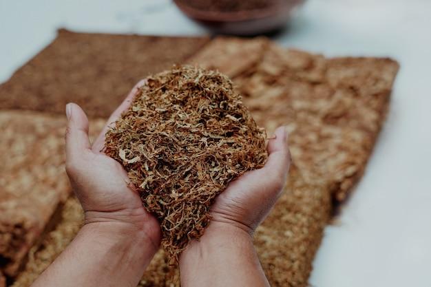 Hand, die ein bündel geschnittenen tabak hält
