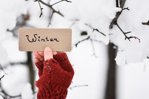 Hand, die eine karte im winterpark hält.