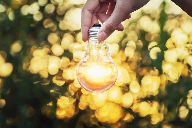 Hand, die glühbirne im wald hält
