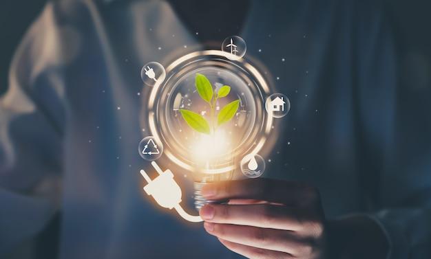 Hand, die glühbirne mit netzstecker hält und bäume zeigt, symbole für erneuerbare energien mit nachhaltiger entwicklung.