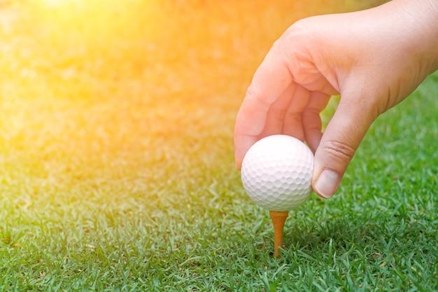 Hand, die golfball auf grünem gras mit golfballnahaufnahme in weichem fokus bei sonnenlicht hält. sportspielplatz für golfclubkonzept