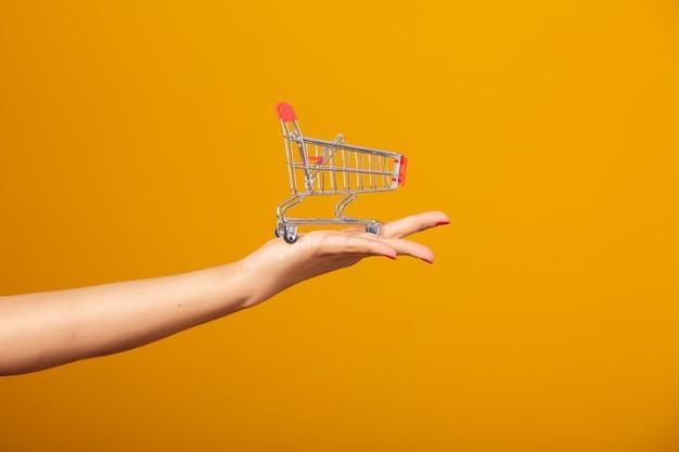 Hand, die kleinen supermarktwarenkorb hält