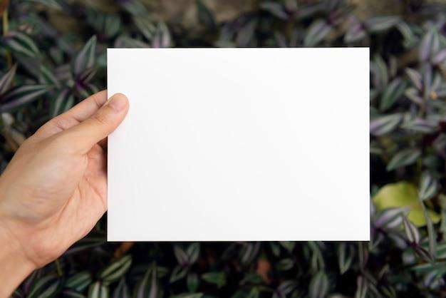 Hand, die leere papierkarte des grußes auf grünem blatt hält
