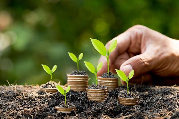 Hand, die münze auf den wachsenden stapel des münzstapels mit grünem bokeh-hintergrund, investitionskonzept setzt