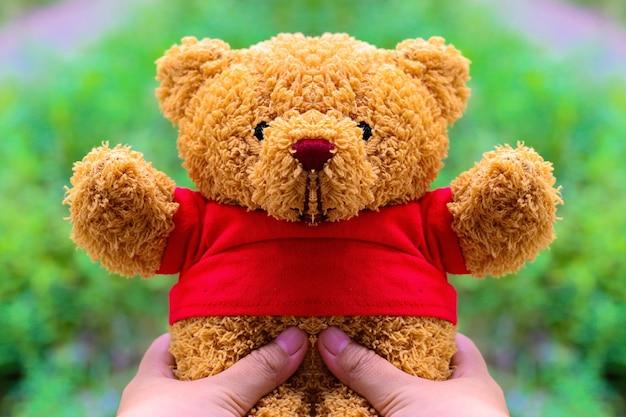 Hand, die teddybären hält.