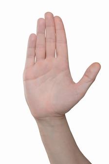 Hand eines erwachsenen mannes. handbewegung - die handfläche wird an der kamera angebracht, stoppschild, stopp, protest