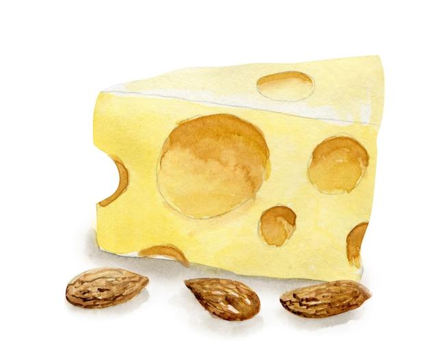 Hand gezeichneter maasdam-käse und mandel. vegetarisches gesundes essen. aquarellillustration. vorlage für karten-, menü- und scrapbooking