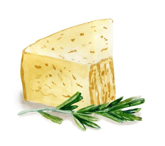 Hand gezeichneter parmesankäse und rosmarin. vegetarisches gesundes essen. aquarellillustration. vorlage für karten-, menü- und scrapbooking