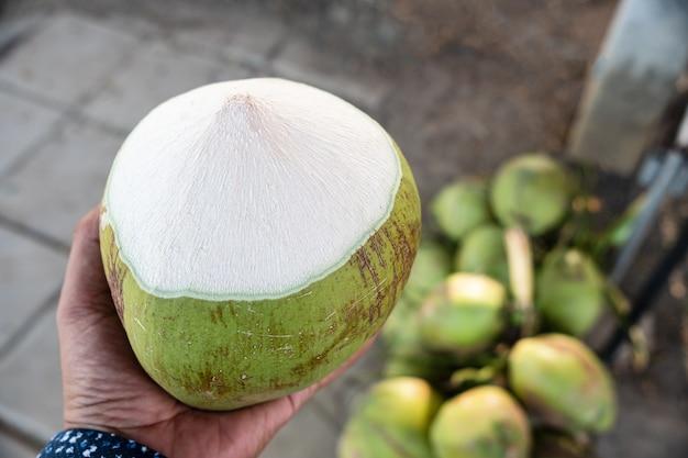 Hand hält eine grüne kokosnuss