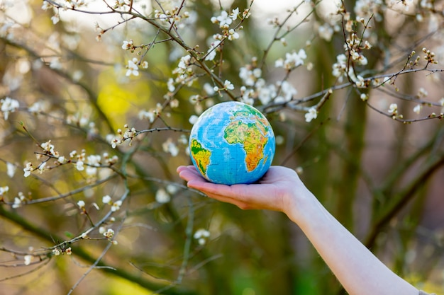 Hand hält erdkugel im blühenden kirschgarten