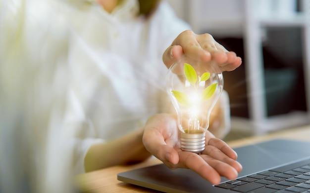Hand hält glühbirne mit energieeinsparung innovation und kreativität sind der schlüssel zum erfolg.