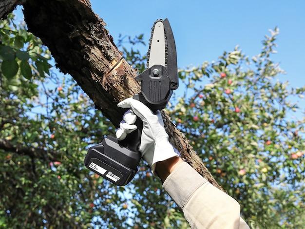 Hand hält leichte kettensäge mit batterie, um gebrochenen ast eines apfelbaums zu trimmen