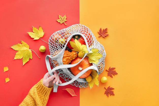 Hand hält orange kürbisse in netzbeutel, herbst gespaltenes papier flach lag in gelber und korallenroter farbe