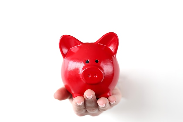 Hand hält rotes schwein sparschwein durch loch in weißem papier