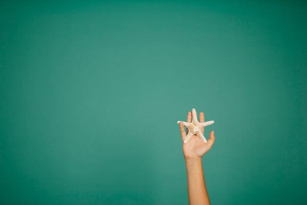 Hand hält seesterne
