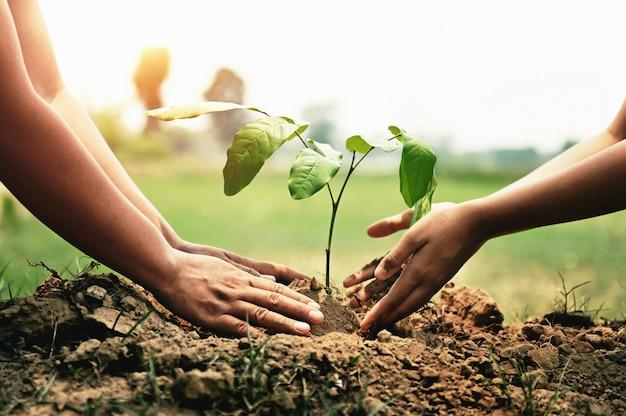 Hand hilft beim pflanzen von bäumen im garten, um die erde zu retten. umwelt-öko-konzept
